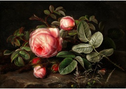 A-1342 Johan Laurentz Jensen - Kytice růžových růží