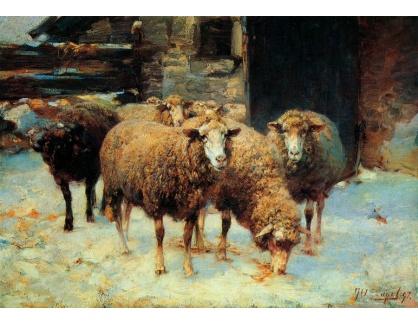 VN-116 Heinrich von Zügel - Ovce v zimě před stodolou