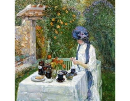 SO IV-40 Childe Hassam - Francouzská čajová zahrada