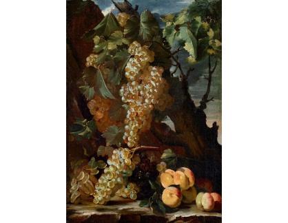 Slavné obrazy I-DDSO-45 Bartolomeo Castelli il Vecchio - Zátiší s hrozny a broskvemi