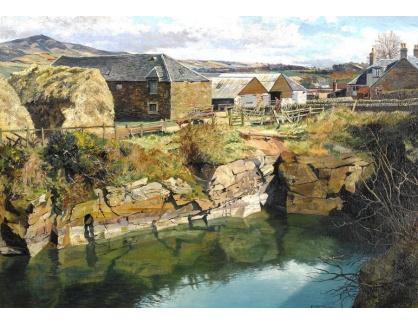 Krásné obrazy IV-29 James McIntosh Patrick - Vesnické domy