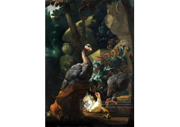 VH560 Abraham Bisschop - Krocan s mláďaty