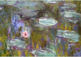 A-256 Claude Monet - Lekníny