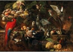 D-9601 Neznámý autor - Mísa s ovocem, papouškem, sojkou a dalšími ptáky na kamenné římse
