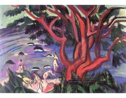 VELK 6 Ernst Ludwig Kirchner - Červený strom na pláži