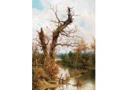 D-9217 Ramon Tusquets y Maignon - Starý strom u potoka
