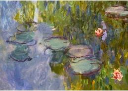 A-255 Claude Monet - Lekníny