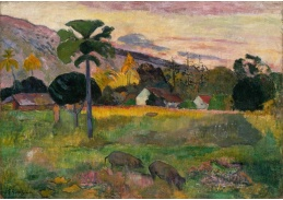 A-108 Paul Gauguin - Pojď sem