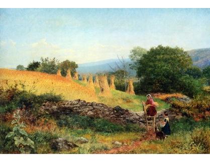 VANG241 Benjamin Williams Leader - Welšské obilné pole