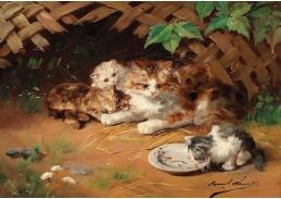 DDSO-1491 Alfred de Neuville - Kočka s koťaty