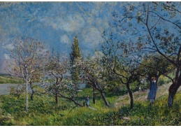 Slavné obrazy XI-9 Alfred Sisley - Ovocný sad na jaře