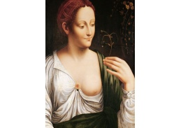 DDSO-5494 Leonardo da Vinci - Colombine