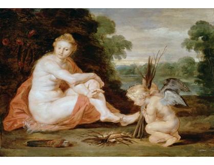 VRU206 Peter Paul Rubens - Venuše a Amor