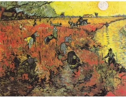 R2-05 Vincent van Gogh - Červená vinice