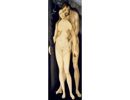 DDSO-2504 Hans Baldung - Adam a Eva