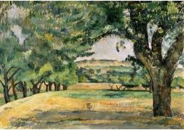 DDSO-4081 Paul Cézanne - V blízkosti Jas de Bouffan