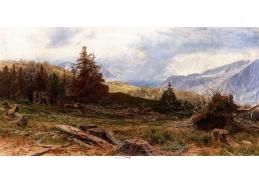 A-1244 Jindřich Tomec - Jelen v široké krajině