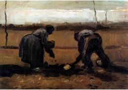 A-15 Vincent van Gogh - Rolníci pěstující brambory