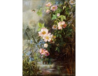 Slavné obrazy I-DDSO-293 Neznámý autor - Květinové zátiší