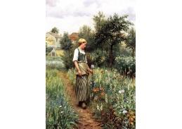 VSO75 Daniel Ridgway Knight - Na zahradě