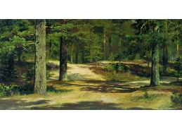 D-6385 Ivan Ivanovič Šiškin - Borovicový les