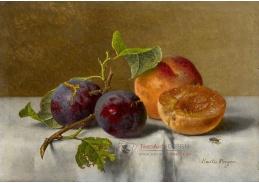 A-1319 Emilie Preyer - Ovocné zátiší s broskvemi a hrozny