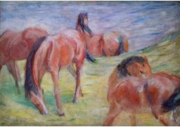 D-7203 Franz Marc - Pasoucí se koně