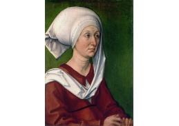 DDSO-5365 Albrecht Dürer - Portrét Dürerové matky Barbary