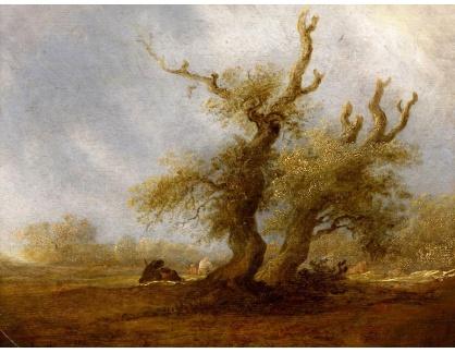 KO III-362 Salomon van Ruysdael - Lesnatá krajina s pastýřem