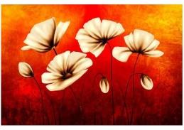 Obraz květiny 4495