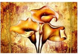 Obraz květiny 4501