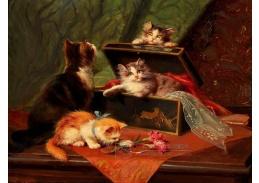 D-9774 Leon Charles Huber - Hravé koťata